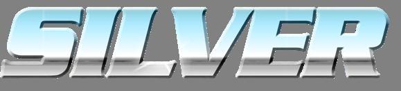 BSK_silver_logo