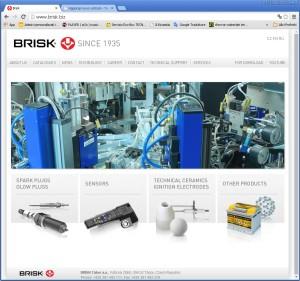 brisk_site